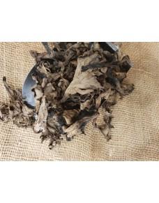Mushrooms Ceps kg.