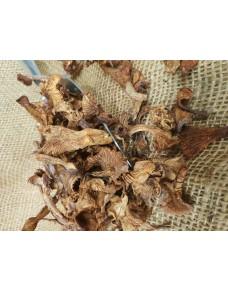 Nightingale Mushrooms kg.