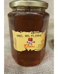 Mixed Flower Honey jar kg.